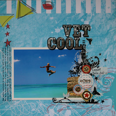 Vet Cool