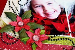 Christmas Joy.detail2