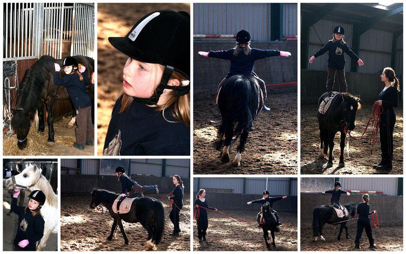 Paardrijden.collage