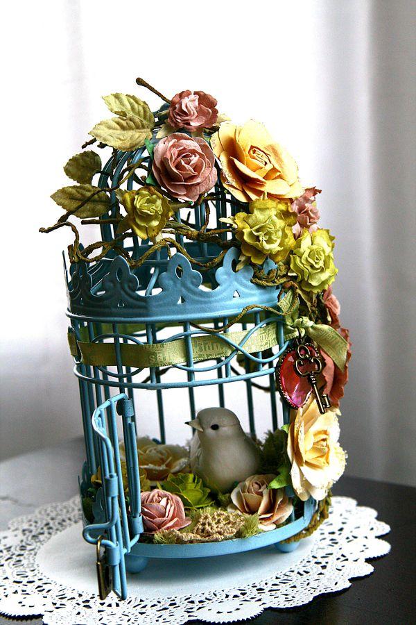 Bird cage open